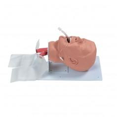Appareil de formation des voies respiratoires