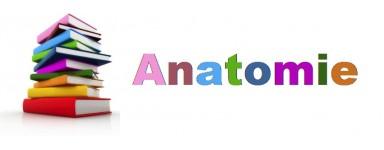 Livre d'Anatomie